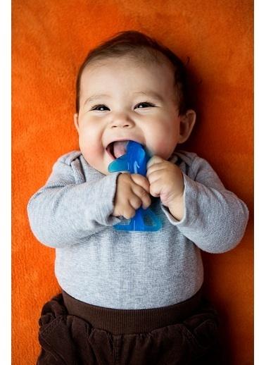 Baby Banana Diş Kaşıyıcı Diş Fırçası Sharky Köpek Balığı-Baby Banana